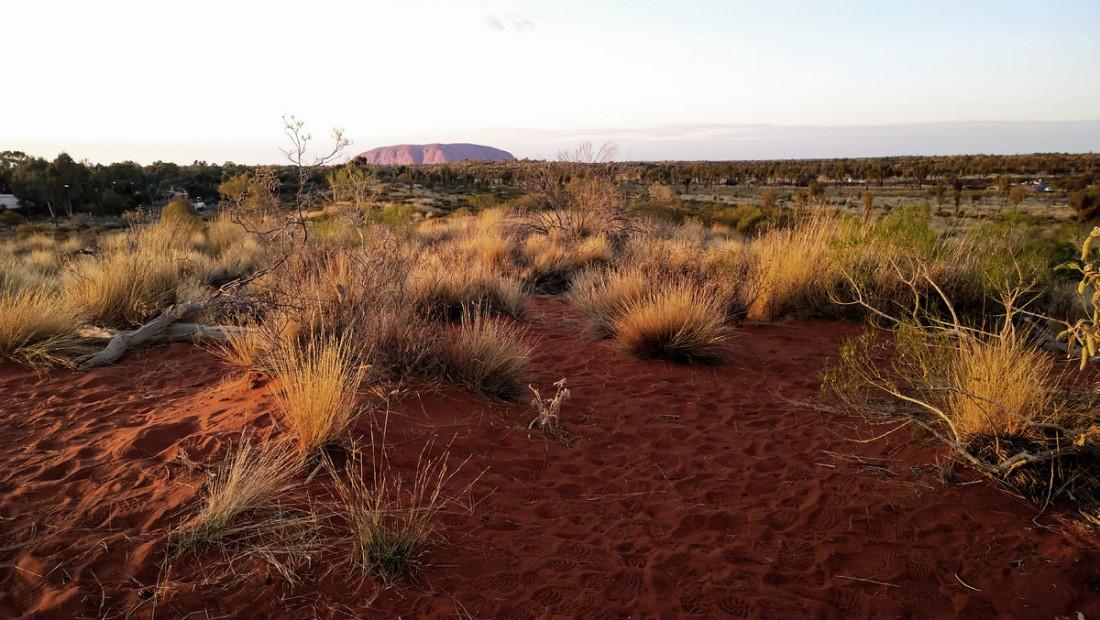Uluru00010